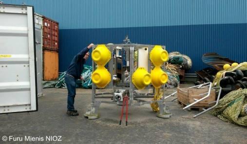 SponGES is an EU project focusing on deep-sea Porifera