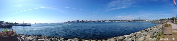 A great panoramic view of Halifax