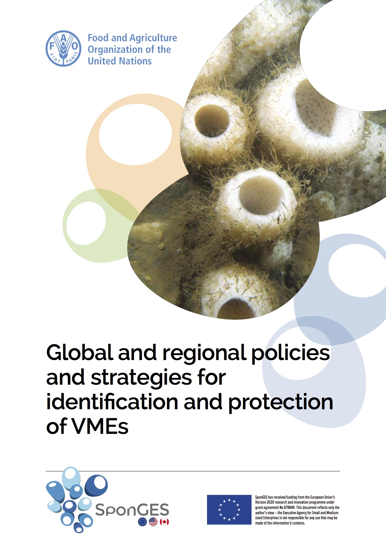 SponGES FAO Policy Vulnerable Marine Ecosystems