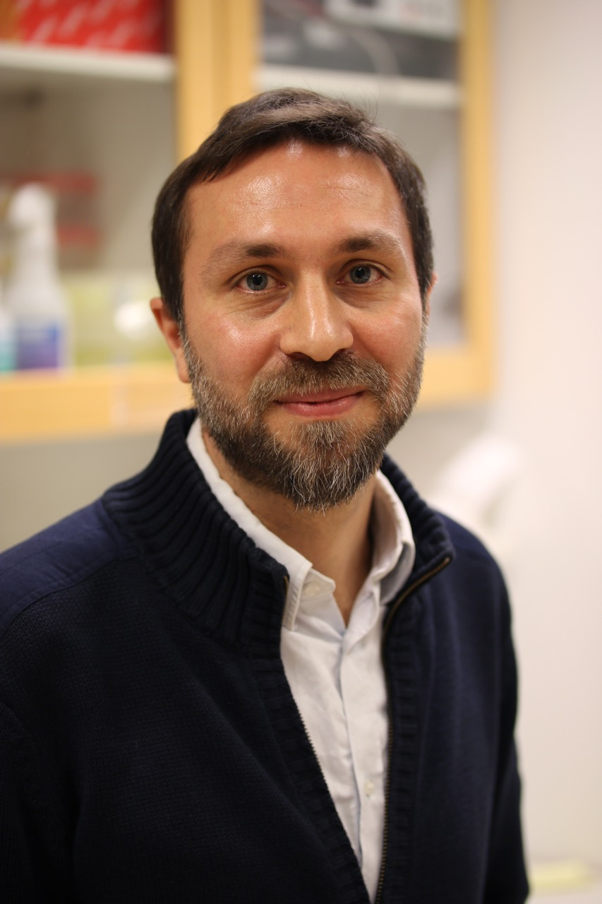 SponGES researcher gets three-year Swedish Research Council grant!