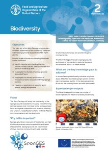 FAO, Factsheet, WP2, SponGES