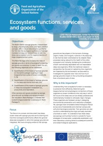 FAO, Factsheet, WP4, SponGES