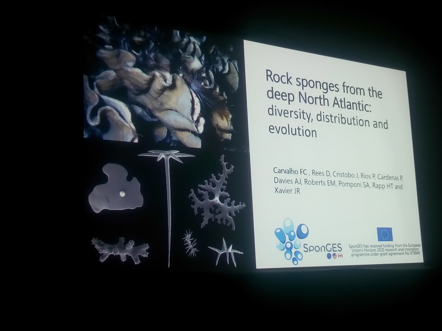 SponGES, MERCES, Atlas, WCMB2018
