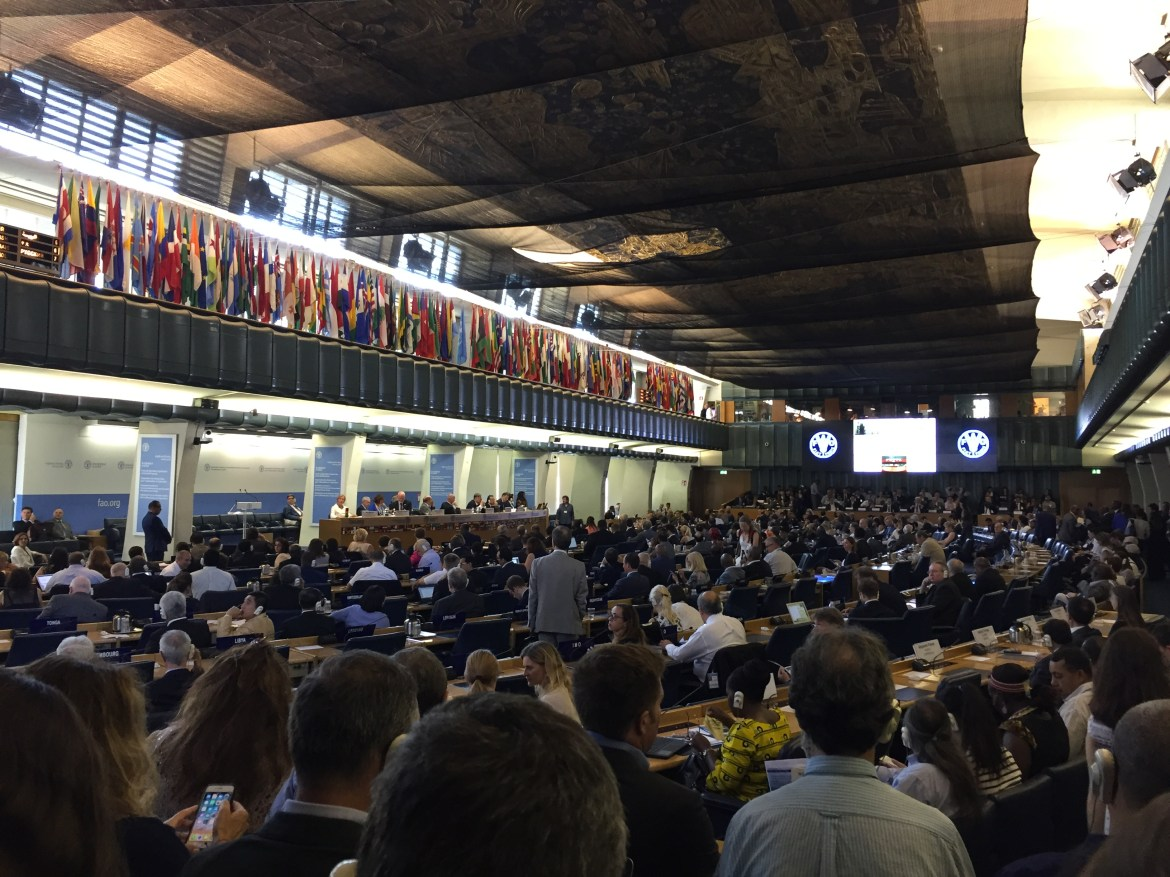 SponGES at 33rd FAO Committee on Fisheries (COFI)
