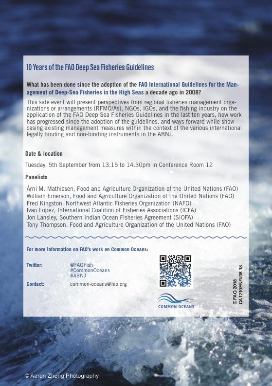 FAO, ABNJ, BBNJ, SponGES, Common Oceans, UN