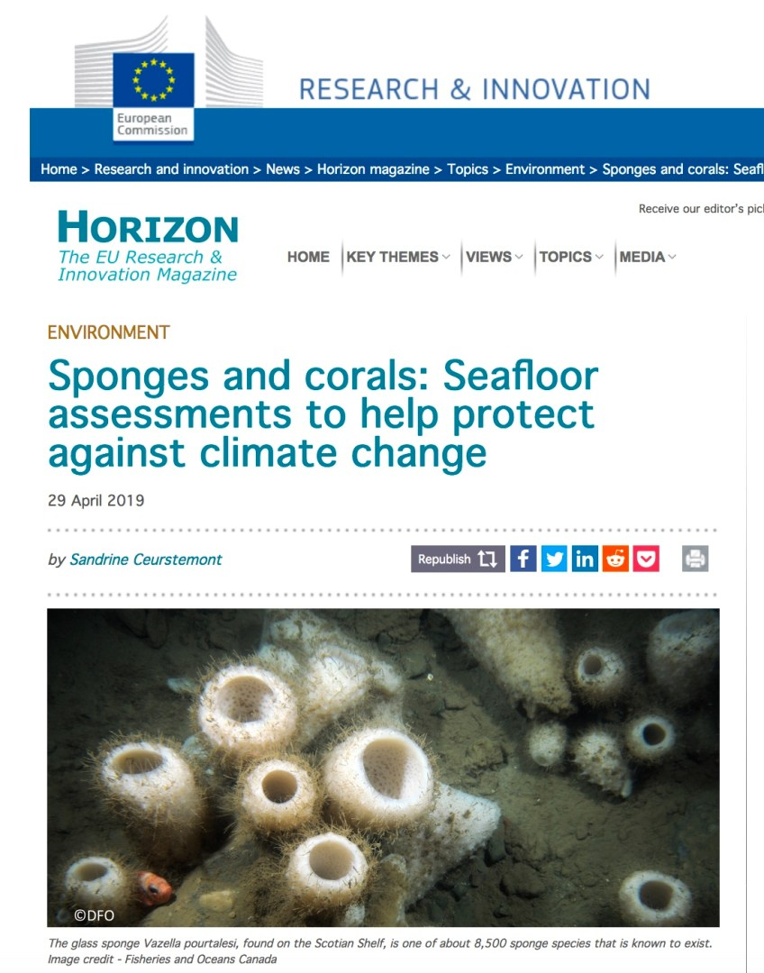 Horizon Magazine covers the SponGES project