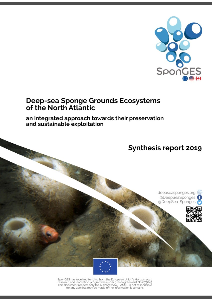 SponGES Synthesis Report 2019