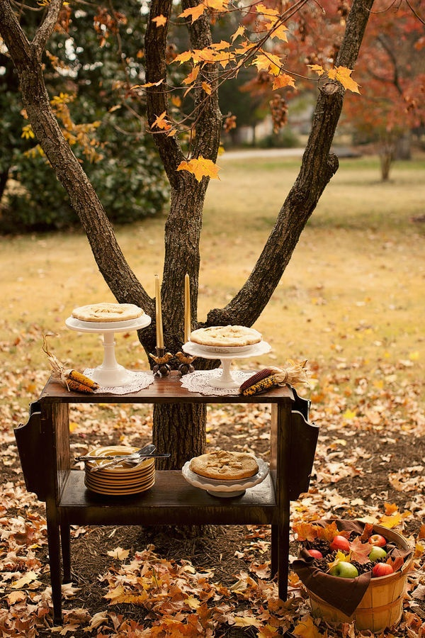 40 Amazing Outdoor Fall Wedding Dcor Ideas Deer Pearl