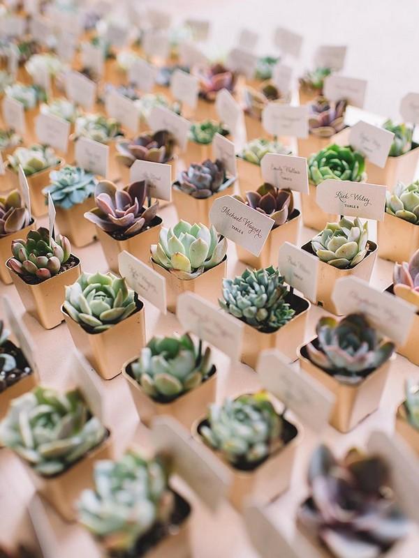 rustic succulent wedding favors