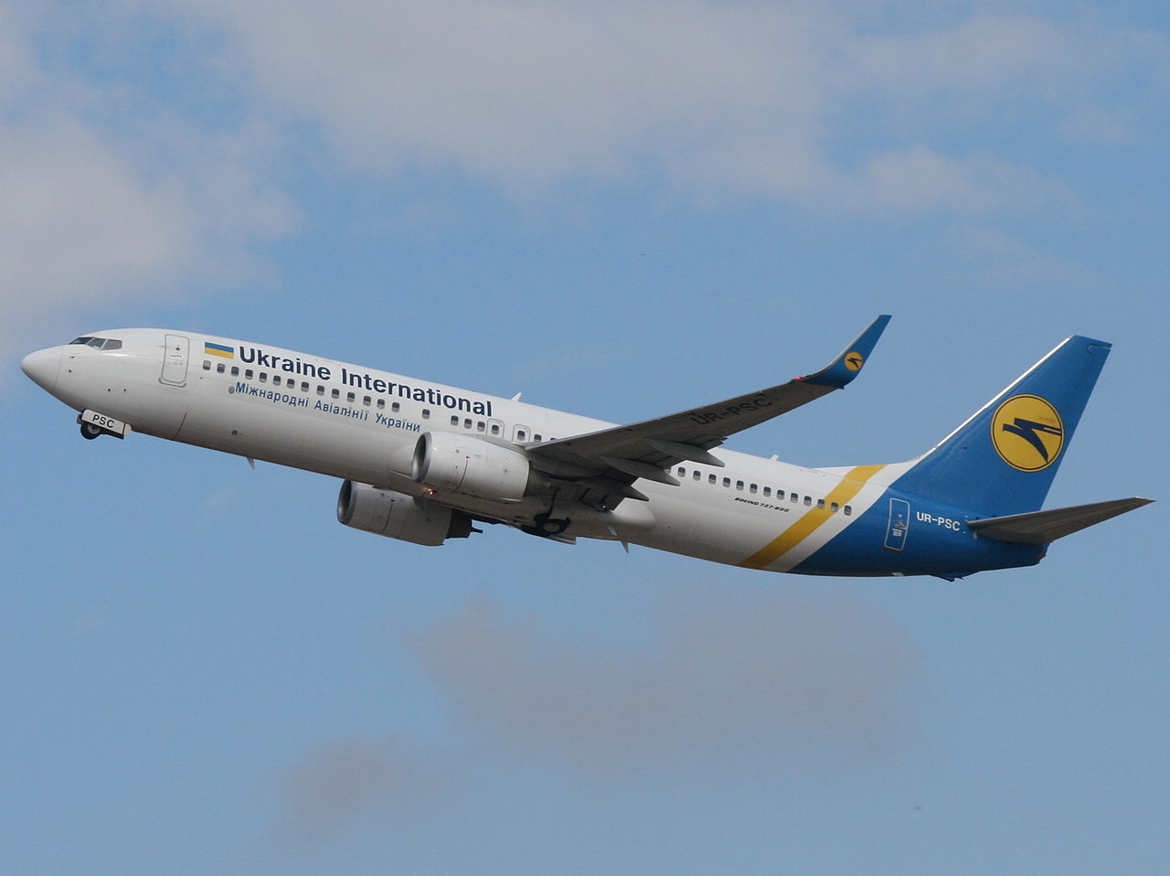 Ukrainian International Airlines Boeing 737-800 crashed after being hit by Iranian Tor-M1 Missile