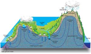 Our island 'water battery' • Defend Island Forests