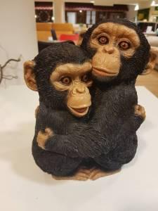 Chimpanzé faune