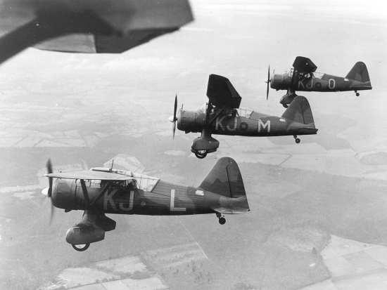 16 squadron lysanders
