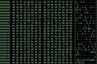 Cyberwar-binary-exe-file