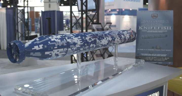 Surface Mine Countermeasure Unmanned Undersea Vehicle (SMCM UUV)