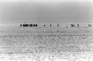 Surrendering Iraqis Gulf War I