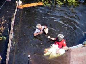 USCG rescuing Katrina victims