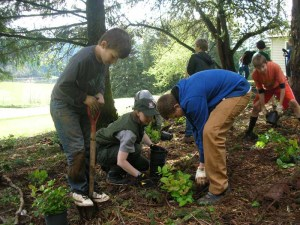 Youth and staff from Lincoln Middle School in Cottage Grove, Ore., volunteer for the day of Caring event April 20, 2012, at Cottage Grove reservoir. USACE park ranger Michelle Frobose helps youth plant shrubbery at the reservoir. U.S. Army Corps of Engineers photo