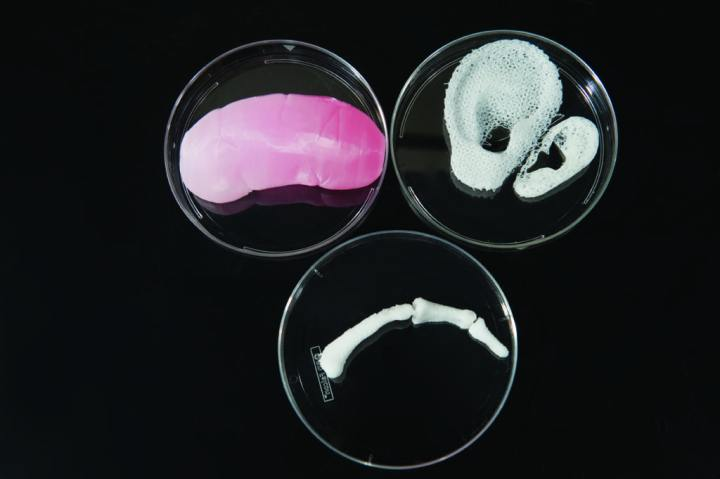 3-D printer seeds