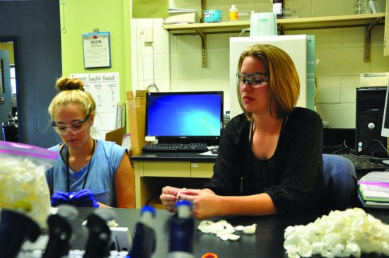 Julia Ward (left), a student attending Transylvania University in Lexington, Ky., and Chelsea Marcum, a Ph.D. student attending the University of Dayton, process silk cocoons at the Air Force Research Laboratory Materials and Manufacturing Directorate's Biological Materials Lab. The silk fibroin obtained from the cocoons is used in making biocompatible thin films to embed nanoparticles and other materials made using synthetic biology approaches. (Air Force photo by Bryan Ripple)