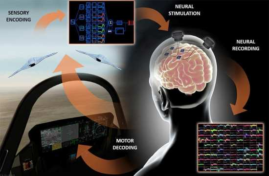 BTO neural interface DARPA web