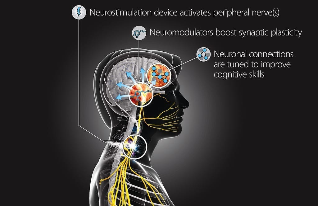 This Targeted Neuroplasticity Training concept diagram demonstrates how the Defense Advanced Research Projects Agency program will explore using peripheral nerve stimulation to enhance learning processes in the brain. DARPA will fund research teams from seven universities and partner with elements of the Air Force and Army to execute the program