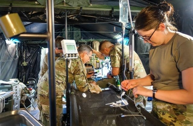 Army Veterinarians Veterinary health animal health military dogs working dogs surgery
