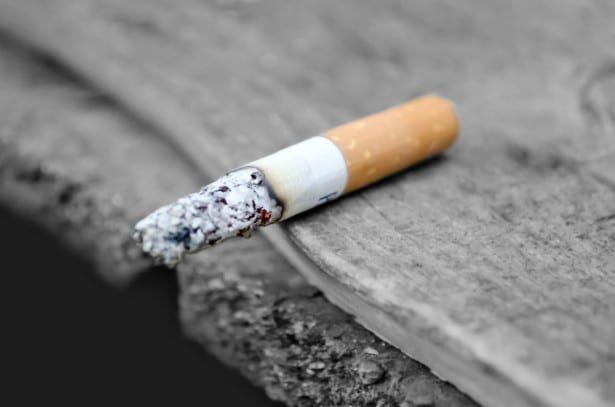 Smoking is another risk for CVD. In addition to looking at systolic blood pressure changes the Vet-COACH study will also measure reductions in CVD risks like tobacco use cholesterol levels.