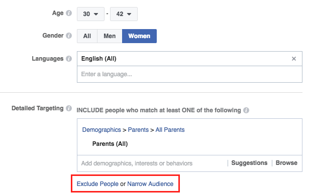 Screen Shot of Audience Segment Options in Facebook