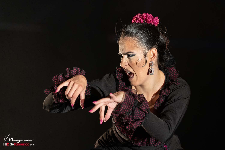 Alegria Navarro - Cante de las Minas