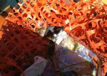 Presència massiva de plàstics en aigües de la Colònia de Sant Jordi, Cala Rajada i Cala d'Or