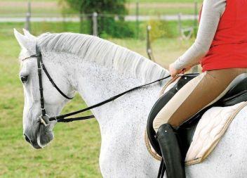 Una dona, en estat greu després de caure del seu cavall en un centre hípic de Llucmajor