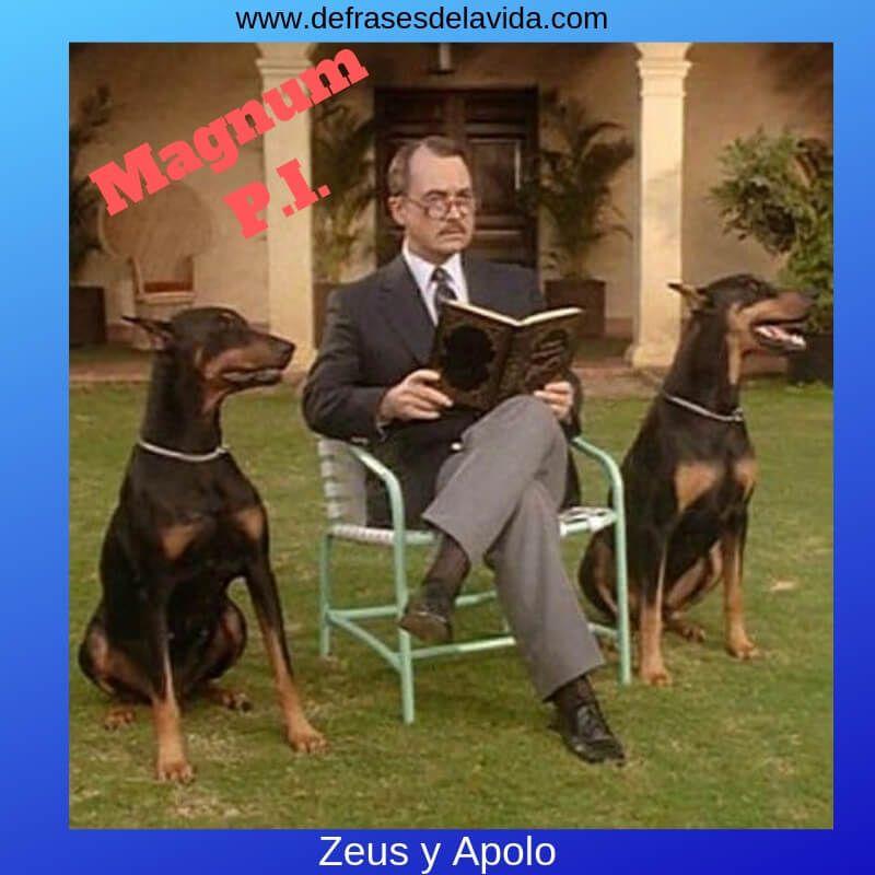 Zeus Apolo Magnum - Magnum PI frases