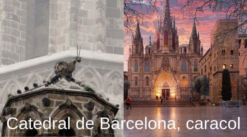 Catedral de Barcelona caracol - Barcelona frases