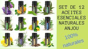 Aceites Esenciales Aromaterapia Anjou naturales 300x167 - Salud y cuidado personal