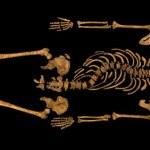 It is King Richard III
