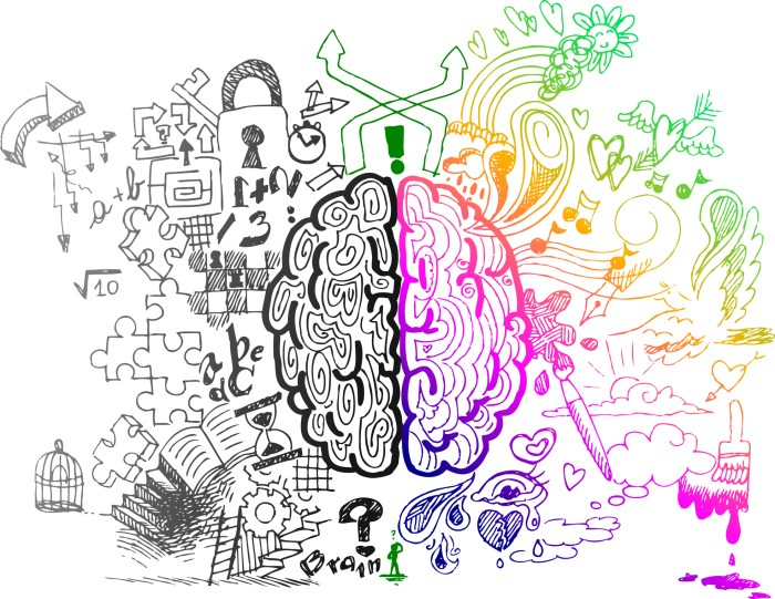 http://www.dreamstime.com/royalty-free-stock-images-brain-hemispheres-sketchy-doodles-image29235739