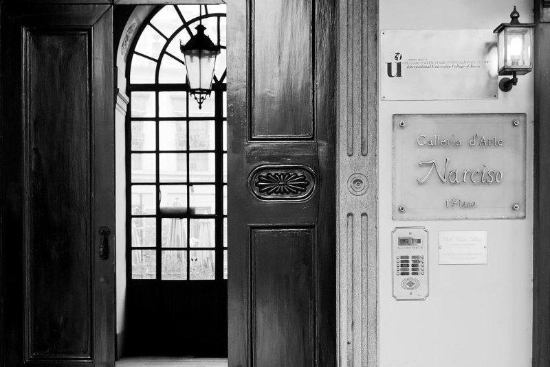 LA STORIA DELLA NARCISO | Una bella galleria torinese