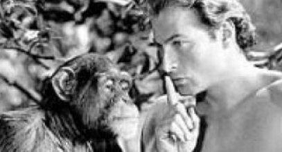 Croce Rossa: a presidé..facce Tarzan