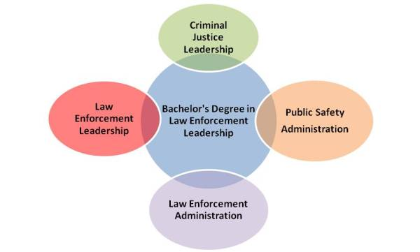 What courses can I expect in a Bachelors Degree in Law