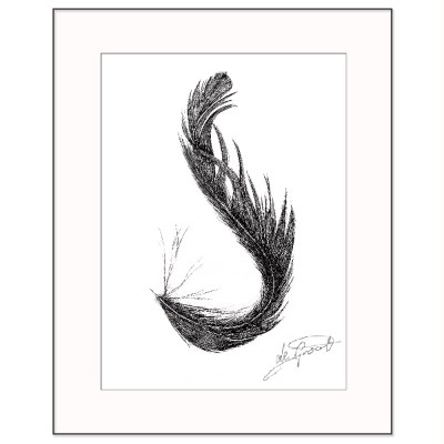 S Feather is a fine line pen and ink drawing on paper by deGroot-Arts