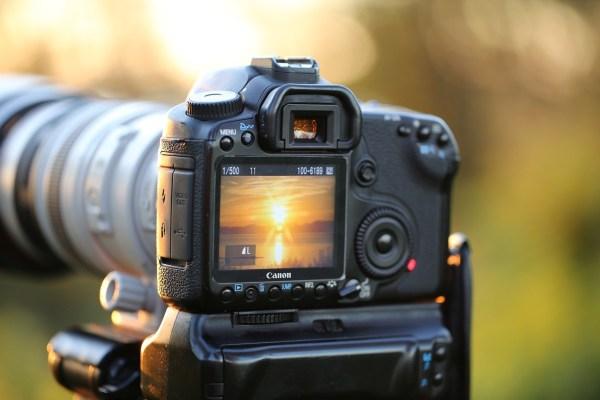 Fotowettbewerb 2020