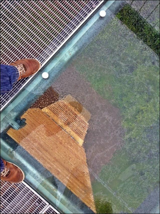 Glasplatte Regionalparkturm Weilbacher Kiesgrubenx