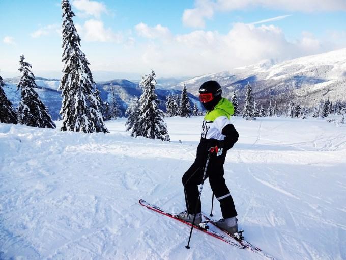 alpine-skier-1631805_1280