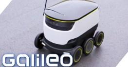 autonome roboter liefern pizza i