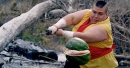 fruit ninja auf dubstep