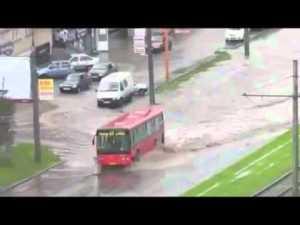 like a bus
