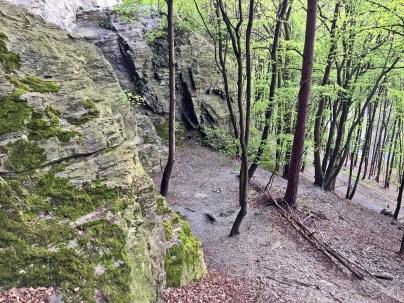 walterstein-lorsbach-eppstein-naturschutzgebiet (2)