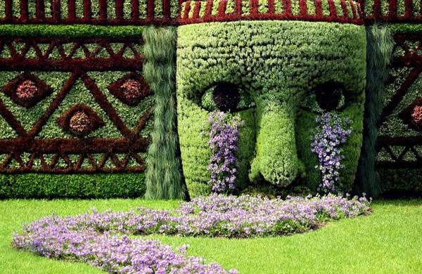 Los mejores consejos de jardineria