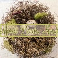 How to Make a Moss Bird's Nest